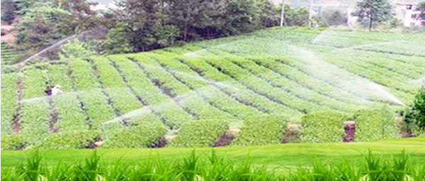 Ocpuritech-Find Water Treatment For Agriculture   Manufacture