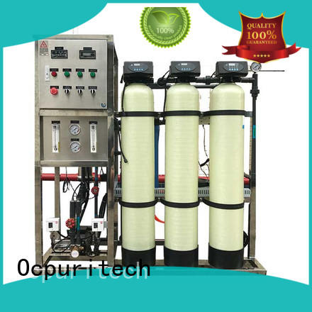 250lph ro plant price plant personalized for food industry