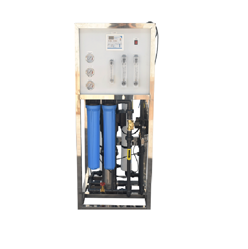1000lph Industrial Ro System Water Treatment Small Well Purifier Plant Cost Filter Machine